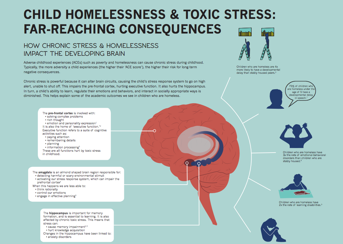 "Once just an infographic, this research on child homelessness and toxic stress is now a full-fledged professional development class at Seattle University this summer for school and social-service professionals. <span class=""s1""><a href=""http://firesteelwa.org/wpsystem/wp-content/uploads/2014/12/big-brain-infographic.pdf"" target=""_blank"">See the full infographic here.</span></a>"